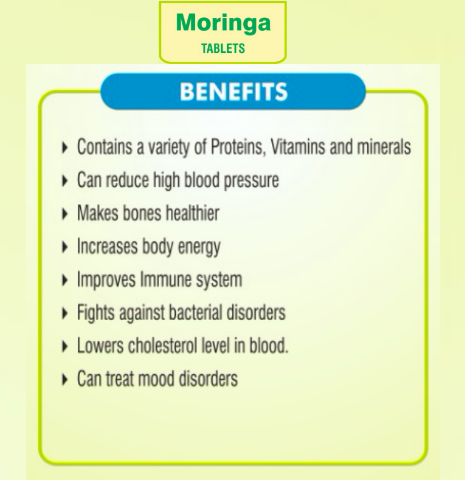 How can Moringa boost your Immune system. Health Benefits and Side Effects You Need to be Aware of..!!
